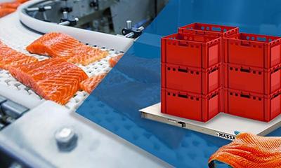 Модули и весы 4D-PM.S_ из нержавеющей стали для пищевой промышленности